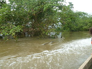 Chucunaque River - Image: Cuenca Rio Chucunaque
