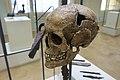 Cultural History (historisk) Museum Oslo. VIKINGR Norwegian Viking-Age Exhibition 14 Grave find Nordre Kjølen, Solør. Sword Spear Axe Arrows Skull (woman 155 cm 18-19 years old. Female warrior? Kvinnelig kriger?) Late 10th c. 4747.jpg