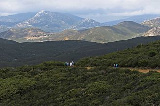 Laguna Mountains - Laguna Mountain's chaparral habitat in foreground, Cuyamaca Mountains in background.