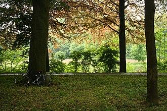 Albert Canal - Cycling path along the Albert Canal, near Smeermaas, Limburg