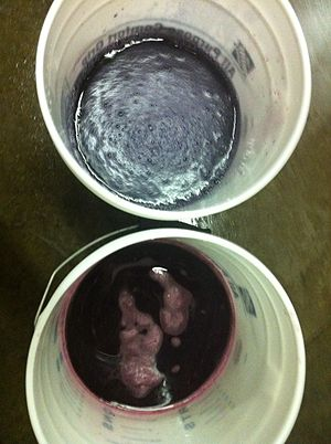 Yeast assimilable nitrogen - Two buckets of red wine must with the top bucket showing the bluish color change after diammonium phosphate (an ammonia base) is added to the wine.