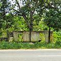 Dambulla, Sri Lanka - panoramio (3).jpg