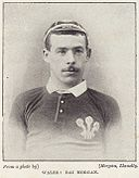 David Morgan, Welsh rugby.jpg