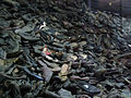 Day 7- A mountain of shoes (45081047).jpg