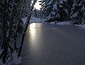 December sun (4152623657).jpg