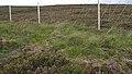 Deer Fence (An Sgòr Dubh) on Mar Lodge Estate (29JUL17) (6).jpg