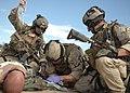 Defense.gov News Photo 070713-F-8769P-227.jpg