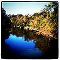 Des Plaines River (6205194244).jpg