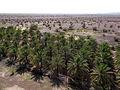Desert outside Jabrin (8730383086).jpg