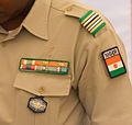 Detail various insignia lieutenant colonel of army of Niger.jpg