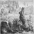Die Gartenlaube (1878) b 687.jpg