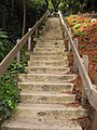 Dipsea Trail. This highest stairway is cement, with sponsor plaques embedded in each step. It rises from Havel Avenue to Edgewood Avenue. - panoramio.jpg