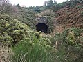 Disused railway tunnel - geograph.org.uk - 71684.jpg