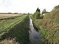 Ditch past Sunnyside - geograph.org.uk - 1556064.jpg