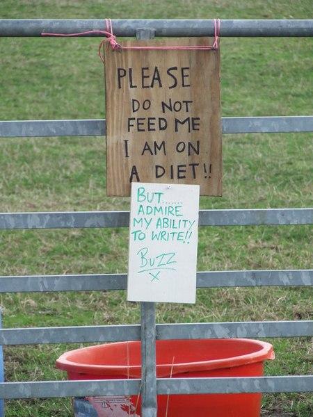 File:Do Not Feed sign at Shotley, Suffolk - geograph.org.uk - 1584358.jpg