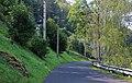 Dobkovice, road to Prosetín.jpg
