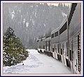 Donner pass , Truckee - panoramio.jpg