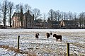 Doorwerth Castle with ponys at 12 Februari 2012 - panoramio.jpg