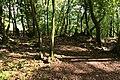 Dornburg Celtic Oppidum Hildegardisfelsen 1.jpg