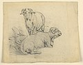 Drawing, Study. Two rams., ca. 1850 (CH 18368985).jpg