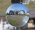 Drebacher Krokuswiesen im Glaskugel. IMG 7777FB.jpg