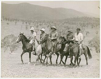 Drover (Australian) - Drovers NSW 1942