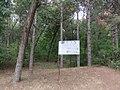 Drvece u parku (7).jpg