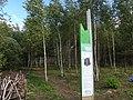 Dzerzhinsky District, Kaluga Oblast, Russia - panoramio (83).jpg