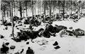 Dzyatlava (Zdzięcioł) massacre 1942.png