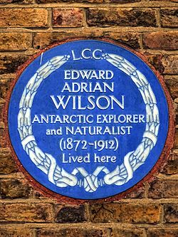 Edward adrian wilson antarctic explorer and naturalist (1872 1912) lived here