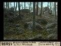 ETH-BIB-Bergsturzblöcke im Wald bei Bad Forsteck-Dia 247-15050.tif