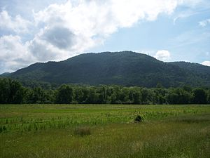 Chilhowee Mountain - Part of the eastern portion of Chilhowee Mountain where the Little River forms a gap separating the mountain into two halves
