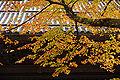 Eiheiji27s4592.jpg