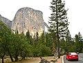 Entering Yosemite National Park (27869618299).jpg