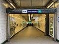Entrée Station Métro Châtillon Montrouge - Châtillon (FR92) - 2021-01-03 - 2.jpg