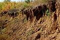 Erosion - panoramio (2).jpg