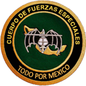 Cuerpo de Fuerzas Especiales - Special Forces Corp 5th Battalion Shoulder Patch