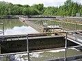 Esholt Water Treatment Works - geograph.org.uk - 13394.jpg