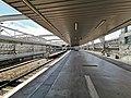 Estação Ferroviária de Entrecampos, plataformas. 06-19.jpg