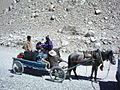 Everest Horse Cart.jpg