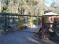Exhibiciones del zoo de El Pretil - panoramio.jpg