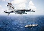 FA-18E Super Hornet of VFA-113 flies over USS Theodore Roosevelt (CVN-71) on 26 October 2017 (171026-N-TQ088-587).JPG