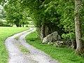 Farm Road - geograph.org.uk - 449160.jpg