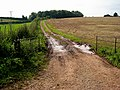 Farm track off Bowers Lane - geograph.org.uk - 963832.jpg