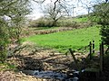 Farmland and stream near Monkton Wylde - geograph.org.uk - 160233.jpg