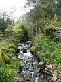 Fast-flowing stream - geograph.org.uk - 750123.jpg