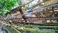 Fence top Boracay Philippines.jpg