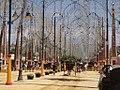 Feria del Caballo 2014 – Jerez de la Frontera – DSC07331.JPG