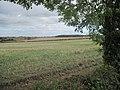 Field of Stubble - geograph.org.uk - 1506161.jpg