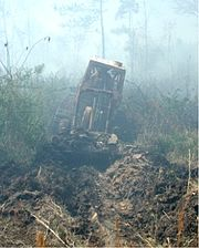 Plowing a fire lane in advance of a forest wildfire, Georgetown, South Carolina